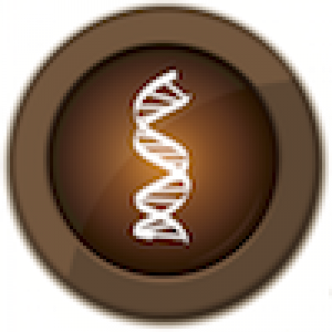 bronze_COBIT_helix7