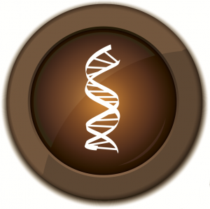 bronze_COBIT_helix1